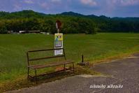 田舎のバス停 - 今が一番