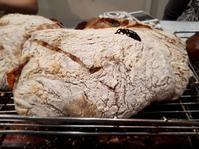 自家製酵母のパンレッスン - ふくすけのコネコネ 編み編み てくてく日記
