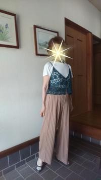 6月26日、ワイドパンツを着てみました - 楽しく元気に暮らします