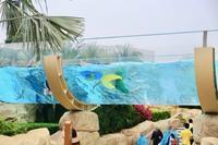 2019 子連れ香港・マカオ③ 〜6つのホテルと繋がるプール〜 - 旅するツバメ                                                                   --  子連れで海外旅行を楽しむブログ--