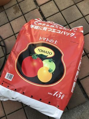 エコバッグ 「トマトの土」 -