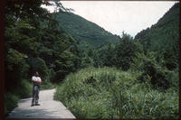 1987年8月6日 竹ノ内峠〜洲本 - 藪の中のつむじ曲がり