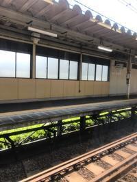 横須賀線に乗って - はなひかり2