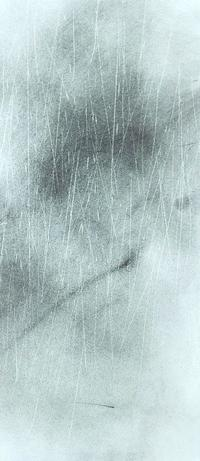 《梅雨蒼鷺》 - 『ヤマセミの谿から・・・ある谷の記憶と追想』
