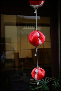 奈良観光-18 - Camellia-shige Gallery 2
