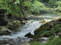 『円原(えんばら)川の流れ・・・・・』 - 自然風の自然風だより