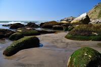 イタンキ浜の散歩....4 - slow life-annex