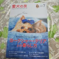 愛犬の友 - りりぃ達といっしょ+りお+りぃ&ちゃい