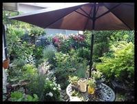 ちょっと前の庭 - 小さな幸せ