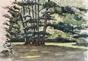 ヴェルサーユ宮殿の絵画学校 (Cours de peinture au chateau de Versailles) - 風と旅人(絵画編)