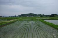 明日香村奥山 - ぶらり記録 2:奈良・大阪・・・