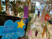 七夕の季節です^_^ - ブレスガーデン Breath Garden 大阪・泉南のお花屋さんです。バルーンもはじめました。