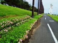 くねった道の先には…(*^-^*) - のーんびり hachisu 日記