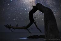 宙を感じて - 遥かなる月光の旅