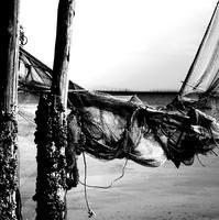 白黒写真#34 - 白黒写真