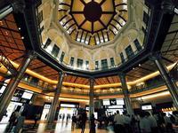 平日 朝の東京駅 - いや、だから 姉ちゃん じゃなくて ネイチャー・・・