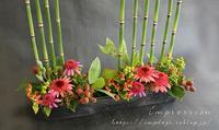 定期装花からエキナセア - Impression Days