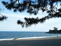 桂浜へ  ☆高知・愛媛の旅⑥☆ - Emily  diary
