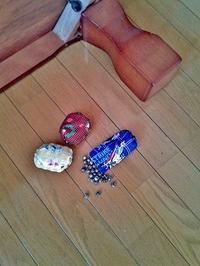 ジュズダマで数珠(じゅず)って、作れるのかな - 空ヤ畑ノコトバカリ