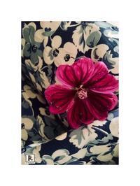 マロウの花が咲きました。 - Bouquets_ryoko