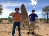 ナミビア旅行記(8) 旅の終わり - さぼってばかりの虫屋日記2