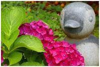 ペンギンと紫陽花 -  one's  heart