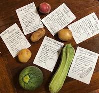 6月30日(日)の営業時間は12:00~16:00です。初ズッキーニのすり流しも登場。初入荷の徳島県の伝統豆味噌「ねさし味噌」の販売も開始します! - miso汁香房(ロジの木)