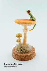 アカメアマガエルとキノコ * Frog & mushroom 01 - … いづみのつぶやき