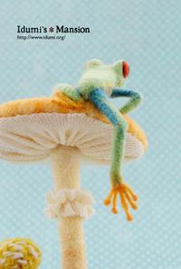 アカメアマガエルとキノコ * Frog & mushroom 02 - … いづみのつぶやき