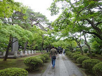 雨の豪徳寺 - マイニチ★コバッケン