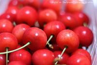 Cherries - Light or Darkness?