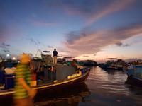 モルディブ首都マレでエイの大群に遭遇 - モルディブ現地情報発信ブログ 手軽に気軽に賢く旅するローカル島旅!