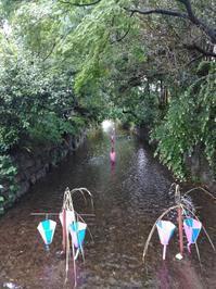 古希祝いに呼ばれ、京都に行き、村上春樹のことを考え、塩原良の太鼓を聴き、サンチャゴにもどる。 - ねこの生活と意見