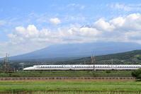 富士強化合宿① - 新幹線の写真