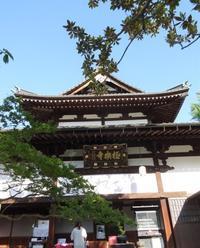 有馬♨ - 軽井沢プリフラdiary