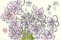 ガクアジサイの花 - 気まぐれ絵手紙