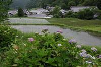 明日香村栢森 - ぶらり記録 2:奈良・大阪・・・