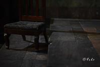 デジカメ入門講座7日目 / Introduction to Digital Photography class, Day 7 - Seeking Light - 光を探して。。。