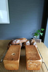 Pullman breadレーズン&クルミ - KuriSalo 天然酵母ちいさなパン教室と日々の暮らしの事