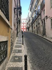 悪友とリスボン珍道中1:Surf & Turfとファド - ハギスはお好き?