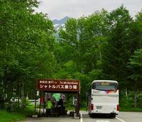 乗鞍山頂シャトルバスが運行開始です~!! - 乗鞍高原カフェ&バー スプリングバンクの日記②