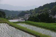 明日香村細川 - ぶらり記録 2:奈良・大阪・・・