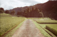 Accumulation of light -想い出- - jinsnap(weblog on a snap shot)