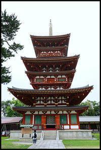 奈良観光-23 - Camellia-shige Gallery 2