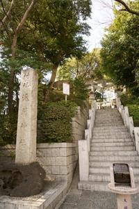 多摩川浅間神社(3月) - 僕の足跡