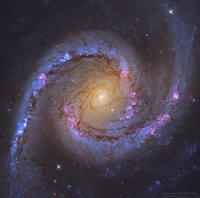 ハッブル宇宙望遠鏡が捉えたカジキ座のセイファート銀河NGC1566の最新画像 - 秘密の世界        [The Secret World]