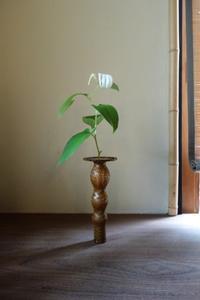 半夏生の候 - g's style day by day ー京都嵐山から、季節を楽しむ日々をお届けしますー