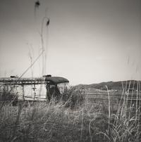 枯草で顔を覆った廃バス - Film&Gasoline