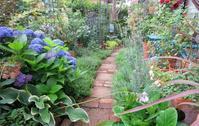 7月の庭 - ひだまりの庭 ~ヒネモスノタリ~