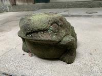 蛙かえるフロッグ - 男のロマンは女の不満